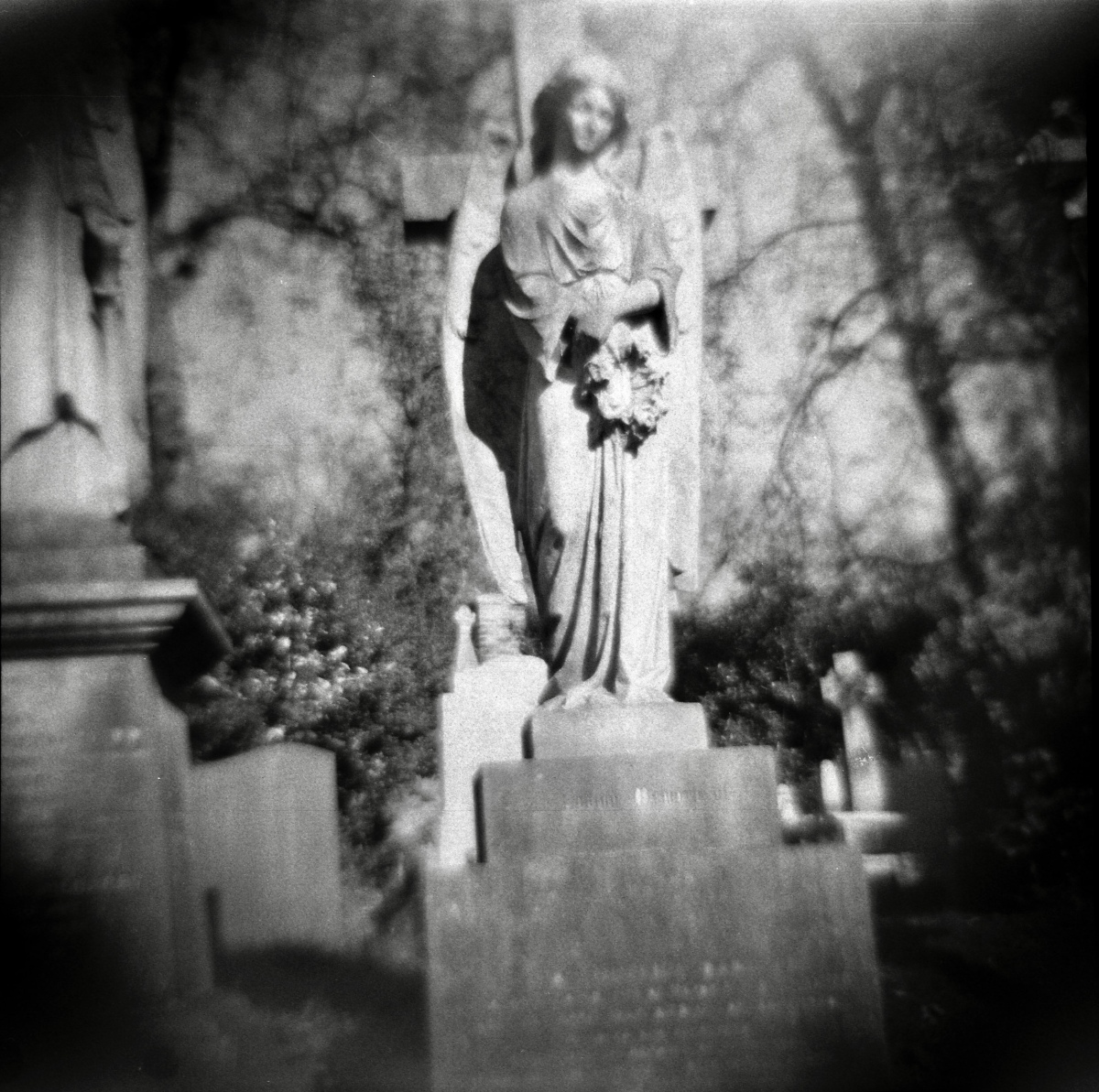 Highgate Cemetery Tour with the Diana F+ Camera